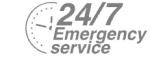 24/7 Emergency Service Pest Control in Clayhall, IG5. Call Now! 020 8166 9746